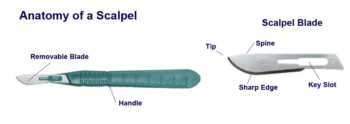 Anatomy of a Scalpel