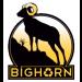 BigHorn Logo