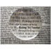 Dome Newspaper Magnifier for Reading