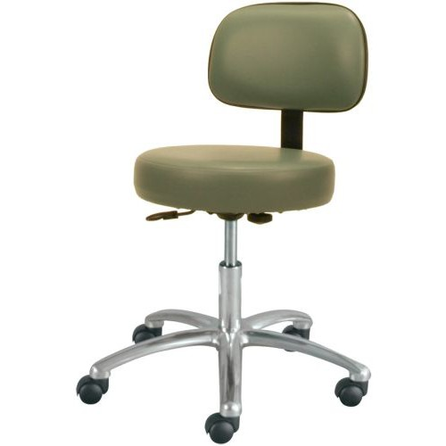 Deluxe Gas Lift Stool with Back
