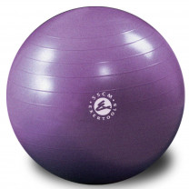 Exertools Burst-Resistant Gym Balls