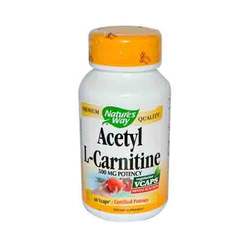 Acetyl L-Carnitine Amino Acids