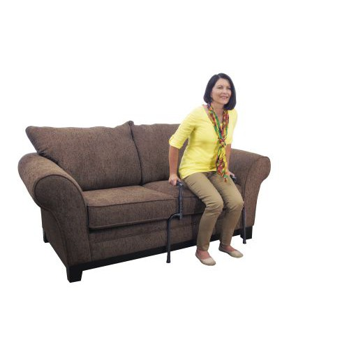 Universal Stand Assist Chair Assist Grab Bar