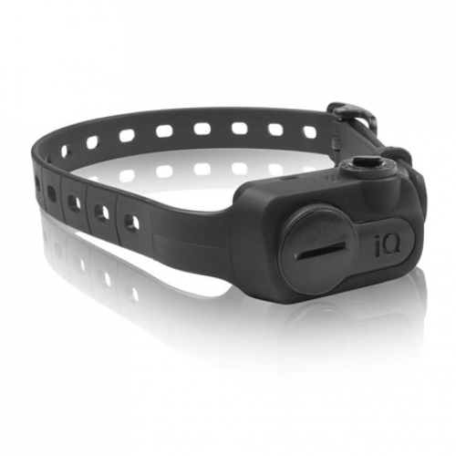Dogtra iQ No Bark Collar