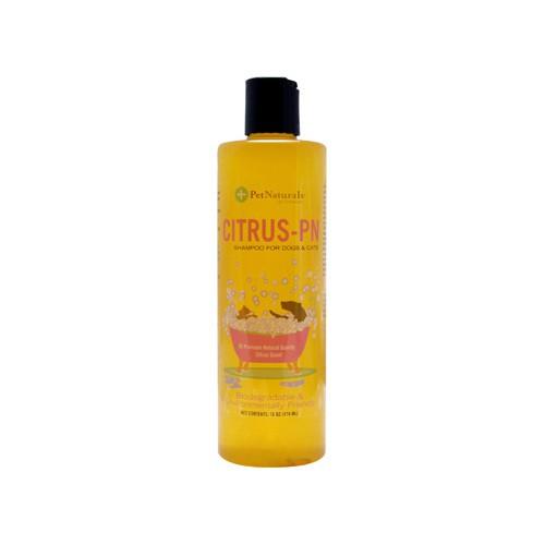 Protect Flea Shampoo