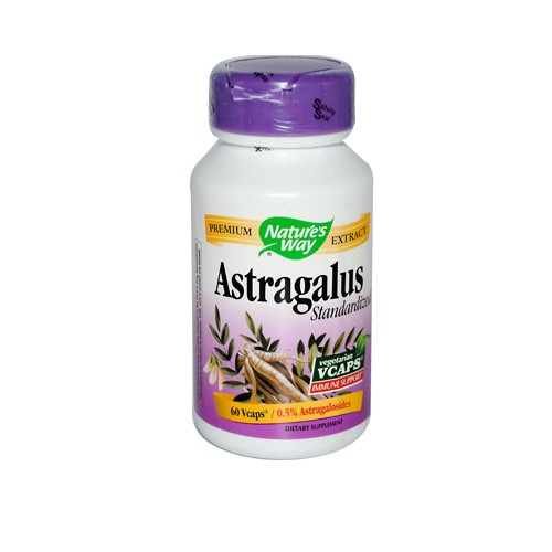 Nature's Way Astragalus Standardized