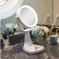 Zadro Max Bright Sunlight Vanity Mirror 10X/1X