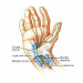 C-TRAC for Carpal Tunnel Therapy