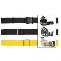 Transfer Walking Belts