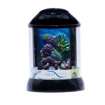3D Background for AquaTerra 1 Gallon