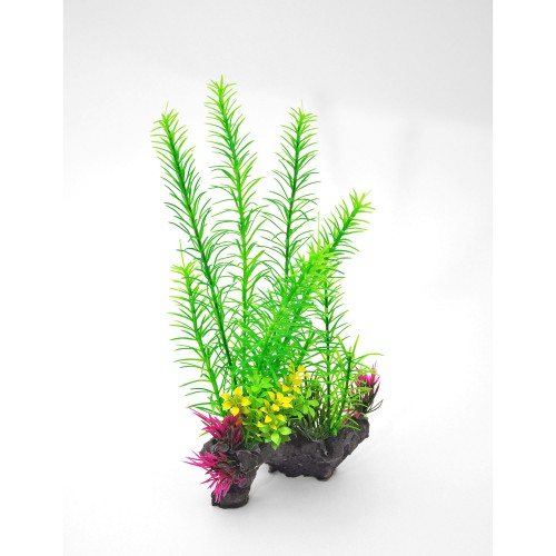 Decorative Foxtail