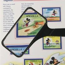 Rectangular 2x Magnifier w/ 6x Bifocal