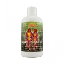 Dynamic Health Pineapple and Mango Liquid Joint Elixir