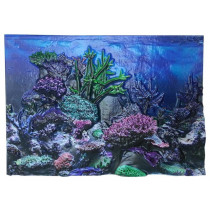 3D Background for AquaTerra 1 Gallon