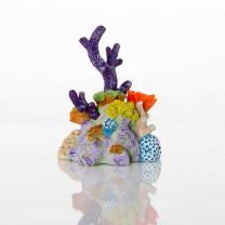 Decorative Pacific Reef
