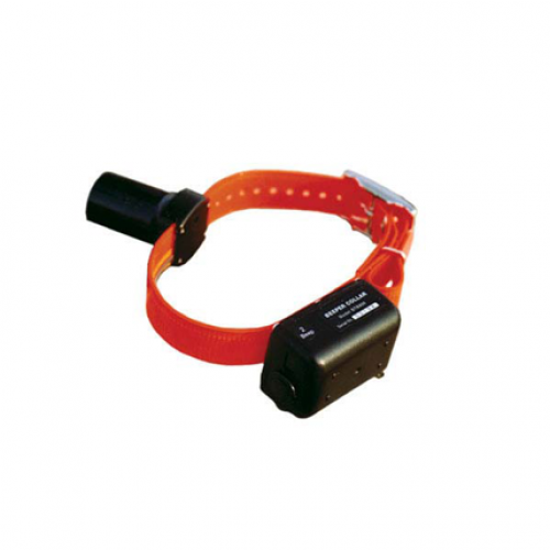 DT Systems Baritone Beeper Collar