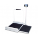 Detecto 6495 Digital Stationary Wheelchair Scale