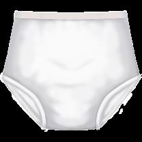 TotalDry Reusable Underwear