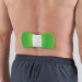 Electrotherapy Neuromuscular Back Pain Reliever