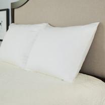 Luxury Tencel Lyocell Waterproof Pillow Cover