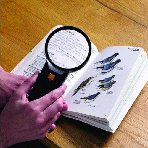 Lighted Magnifier