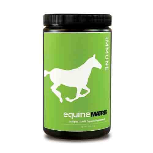 Energy and Immune Support Energy Supplement