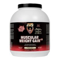 Muscular Weight Gain 3