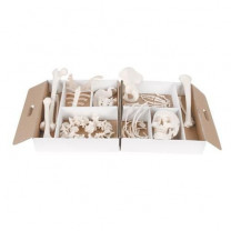 Disarticulated Half Human Skeleton Model