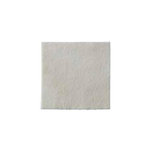 Coloplast Biatain Alginate Ag Dressing 3755 | 2 x 2 Inch with Silver by Coloplast