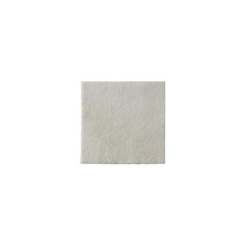 Biatain Alginate Dressing 3710 | 4 x 4 Inch by Coloplast