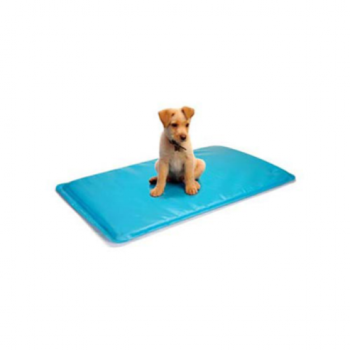 Soothsoft Innovations Canine Cooler