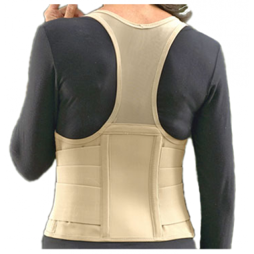 Original Cincher Back Support