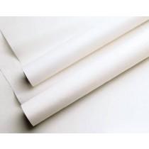 Exam Paper Smooth 21 Inch x 225 Feet