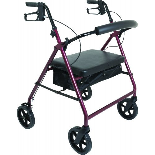 ProBasics Bariatric Rollator with 8 Inch Wheels