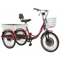 eWheels EW-29 Electric Trike