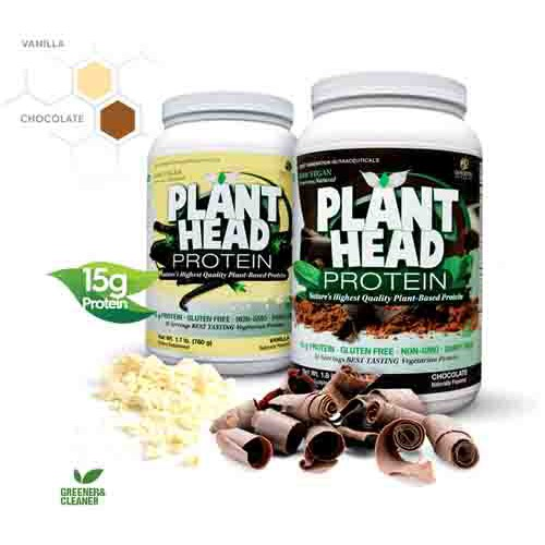 Plant Head Protein Powder