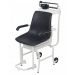 Detecto® 475 Mechanical Chair Scale