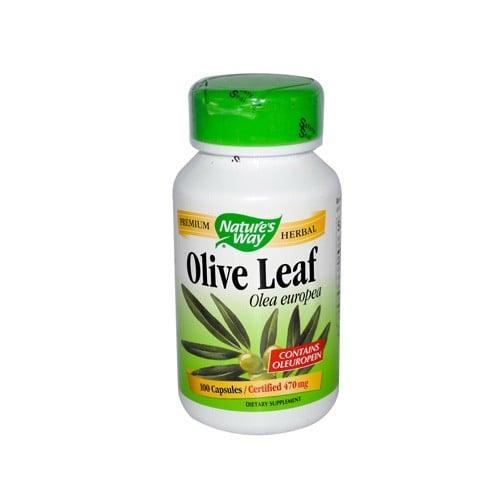 Nature's Way Olive Leaf Olea Europea