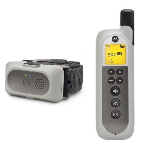 Dog Advanced Remote Training System