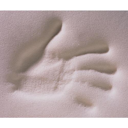 Posey Molding Memory Foam Cushion