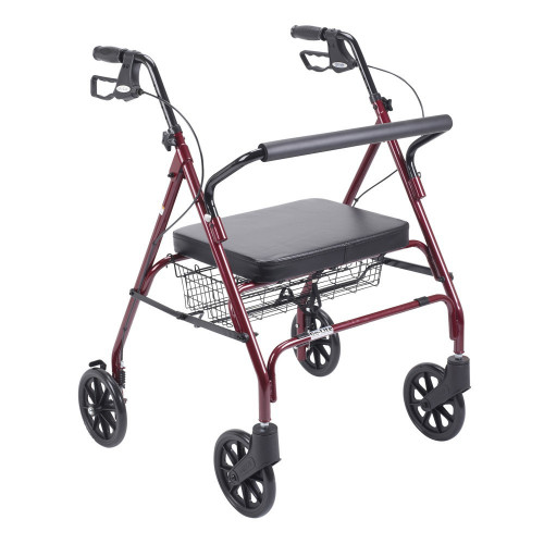Go-Lite Bariatric Steel Rollator by Drive