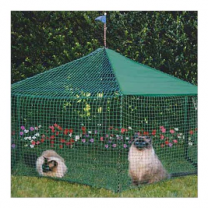 Kittywalk Gazebo