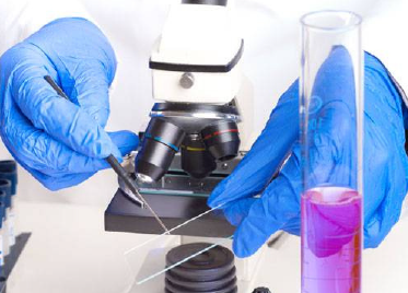 Hongray Nitrile Gloves Used in Laboratory