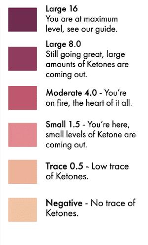 Ketone Chart